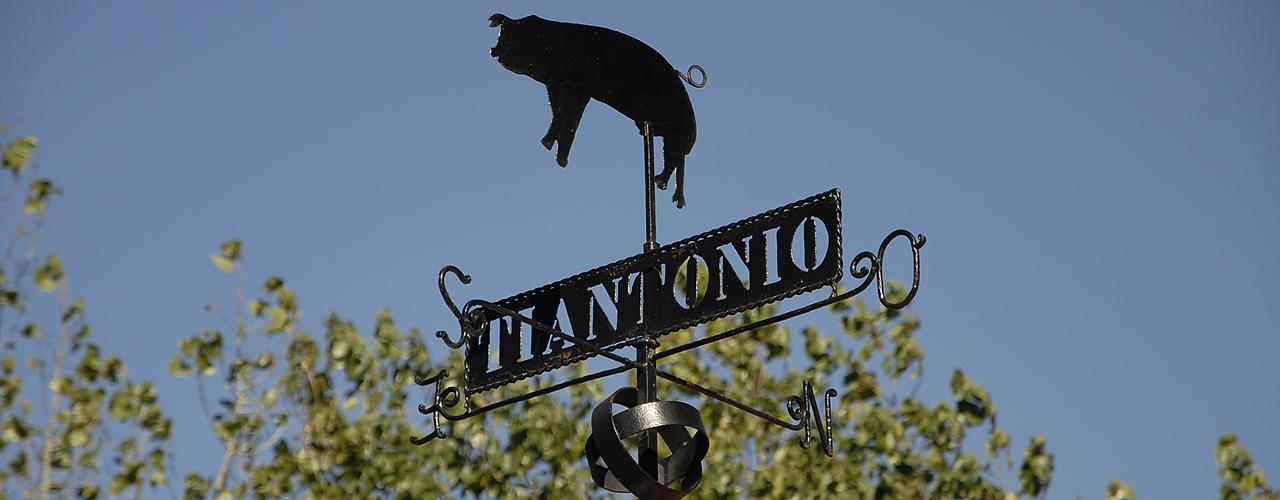 Instalações TiAntónio